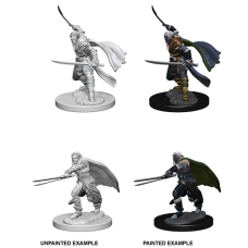 D&D Nolzur's Marvelous Miniatures: Elf Ranger M