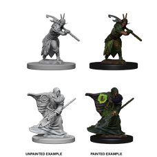 D&D Nolzur's Marvelous Miniatures: Elf Druid M