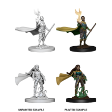 D&D Nolzur's Marvelous Miniatures: Elf Druid F