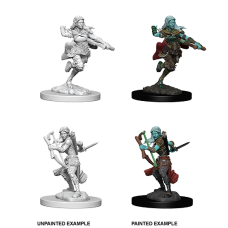 D&D Nolzur's Marvelous Miniatures: Air Genasi Rogue F