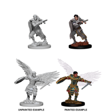 D&D Nolzur's Marvelous Miniatures: Aasimar Fighter M