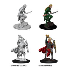 D&D Nolzur's Marvelous Miniatures: Elf Fighter F