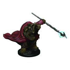D&D Icons: Tortle Male Monk Premium Figure