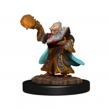 D&D Icons:  Gnome Wizard Male Premium Figure
