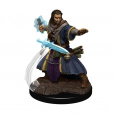D&D Icons: Human Wizard Male Premium Figure